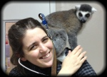 Tricky the lemur sits on Doc Truli's shoulder. This was totally his choice, not Doc's!